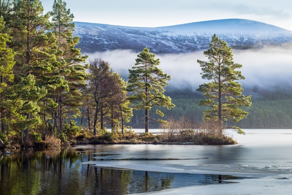 Loch an Eilein in the Cairngorms, Scotland Vacation Packages